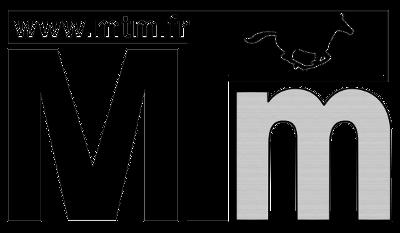 Logo-MTM-gris