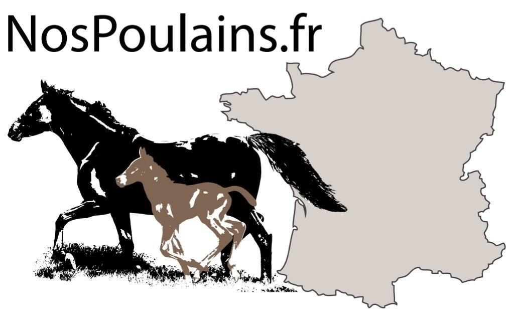 NosPoulains.fr